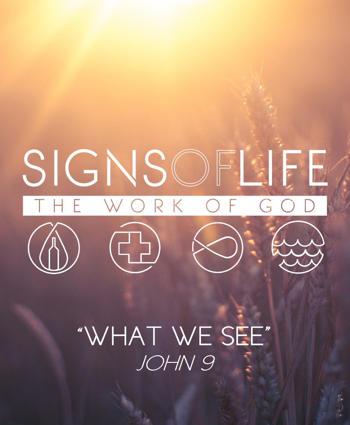 What We See – Signs of Life