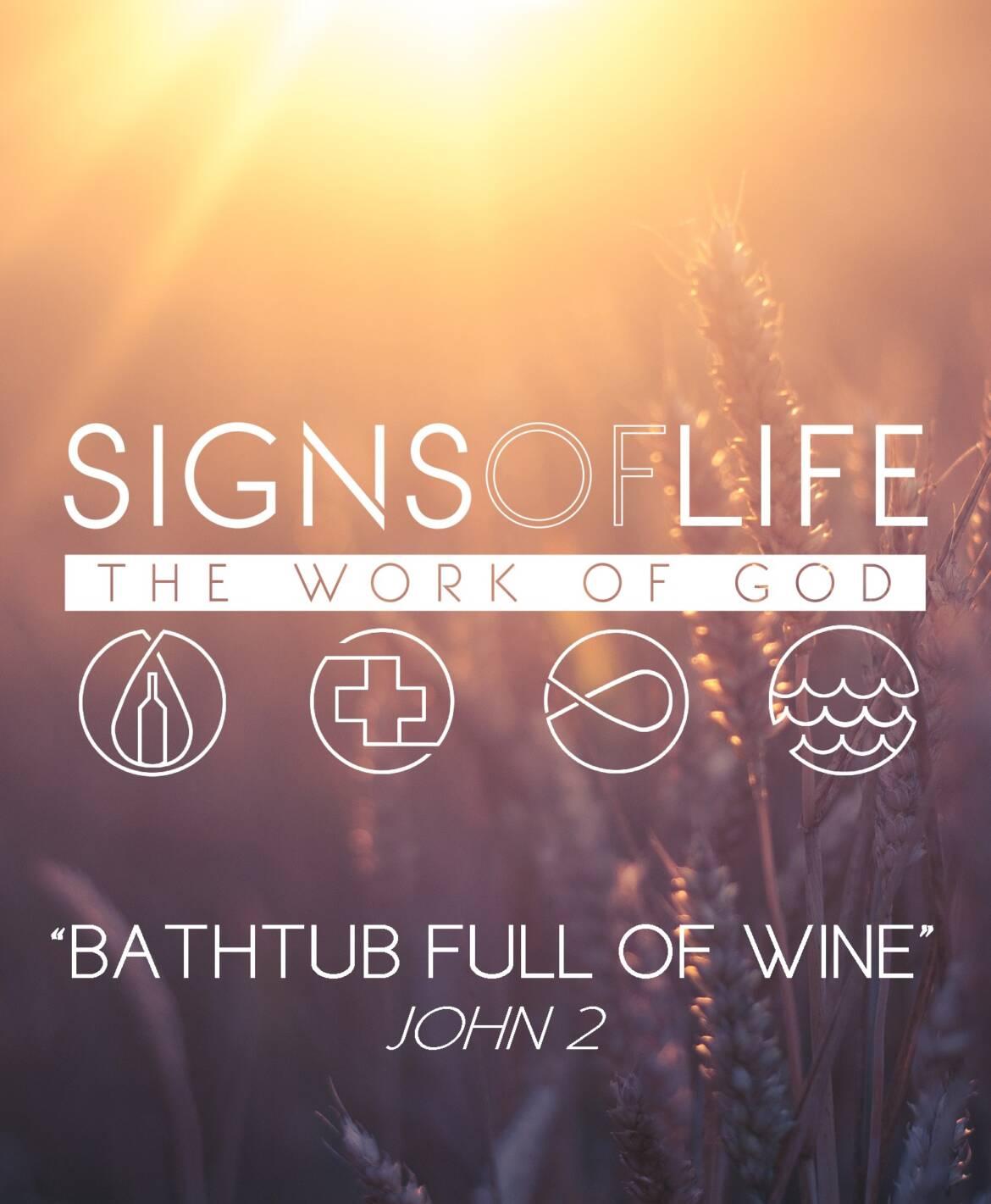Bathtub Full of Wine: Signs of Life